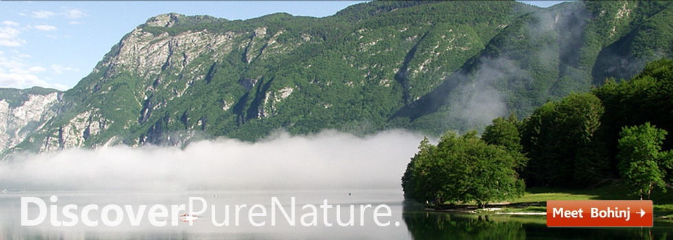 Discover Pure Nature